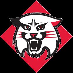 davidson-wildcats-primary-logo