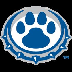 drake-bulldogs-alternate-logo-2015-present