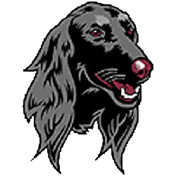 southern-illinois-salukis-alternate-logo-2001-2018-3