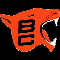 bc-lions-primary-logo-1967-1977