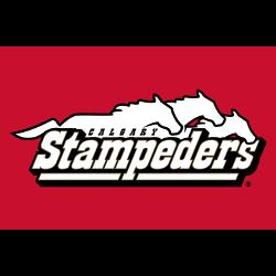 calgary-stampeders-wordmark-logo-2000-2011-3