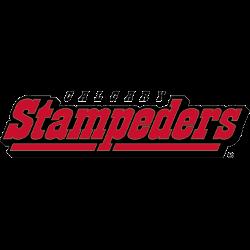 calgary-stampeders-wordmark-logo-2000-2011-2