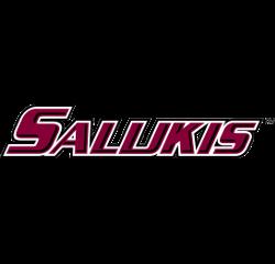 southern-illinois-salukis-wordmark-logo-2001-2018-4