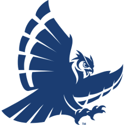 rice-owls-secondary-logo-2017-present-2