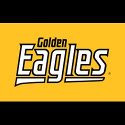 southern-miss-golden-eagles-wordmark-logo-2003-present-13