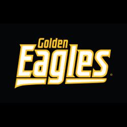 southern-miss-golden-eagles-wordmark-logo-2003-present-18