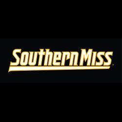 southern-miss-golden-eagles-wordmark-logo-2003-present-19