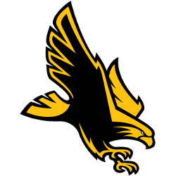 southern-miss-golden-eagles-alternate-logo-2003-present