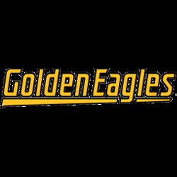 southern-miss-golden-eagles-wordmark-logo-2003-present-5