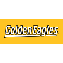 southern-miss-golden-eagles-wordmark-logo-2003-present-16