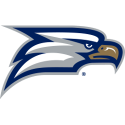 georgia-southern-eagles-secondary-logo-2010-present