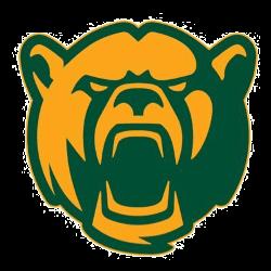 baylor-bears-secondary-logo-2020-present