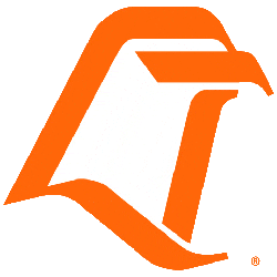 Bowling Green Falcons Primary Logo 1980 - 2005