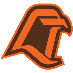 bowling-green-falcons-alternate-logo-1980-2005-3