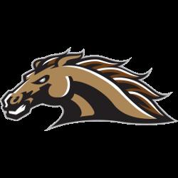 western-michigan-broncos-secondary-logo-1998-2015