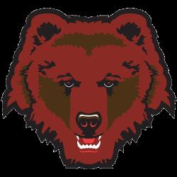 Brown Bears Partial Logo 1997 - Present