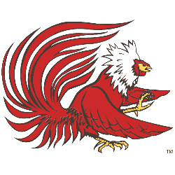 Jacksonville State Gamecocks Primary Logo 1998 - 2005