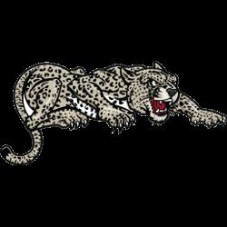 lafayette-leopards-partial-logo-2000-present