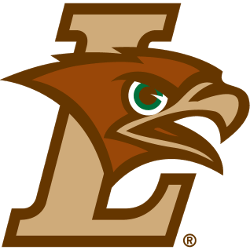 lehigh-mountain-hawks-primary-logo