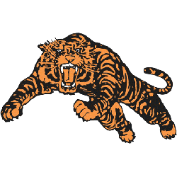 princeton-tigers-alternate-logo-1984-present-2