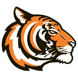 Princeton Tigers Alternate Logo 2003 - Present