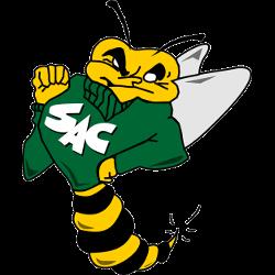 sacramento-state-hornets-primary-logo-1991-2003