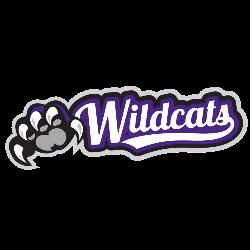 weber-state-wildcats-wordmark-logo-2012-present