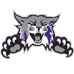 Weber State Wildcats Alternate Logo