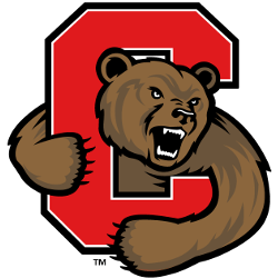 cornell-big-red-alternate-logo-1998-2001
