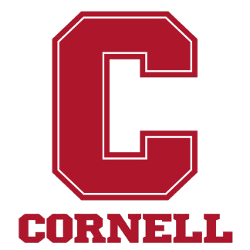 Cornell Big Red Wordmark Logo 1998 - Present