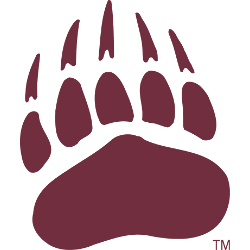 montana-grizzlies-secondary-logo-1996-present