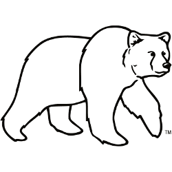 montana-grizzlies-alternate-logo-1996-present-5