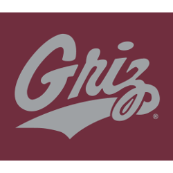 Montana Grizzlies Wordmark Logo 1996 - Present