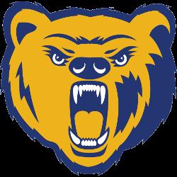 northern-colorado-bears-primary-logo-2010-2014
