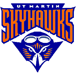 Tennessee-Martin Skyhawks Primary Logo 2003 - 2008
