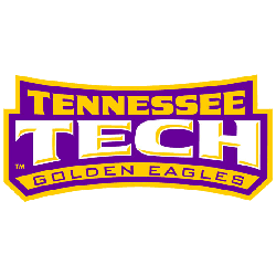 Tennessee Tech Golden Eagles Wordmark Logo 2006 - Present