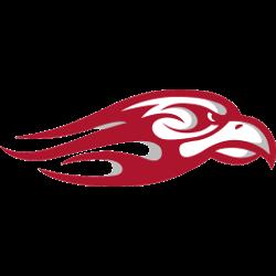 liberty-flames-secondary-logo-2013-present-2