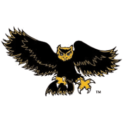 kennesaw-state-owls-alternate-logo-1992-2011-2