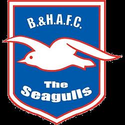 brighton-hove-albion-fc-primary-logo-1998-2000