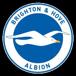 brighton-hove-albion-fc-primary-logo