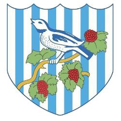 west-bromwich-albion-primary-logo-2001-2006