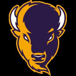 lipscomb-bisons-alternate-logo-2020-present-4