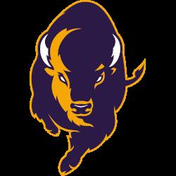 lipscomb-bisons-alternate-logo-2020-present-2
