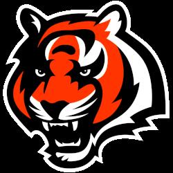 cincinnati-bengals-alternate-logo-2004-2020