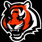 Cincinnati Bengals Alternate Logo 2021 - Present