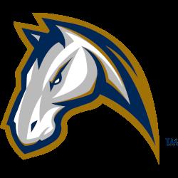 uc-davis-aggies-alternate-logo-1999-2013-5