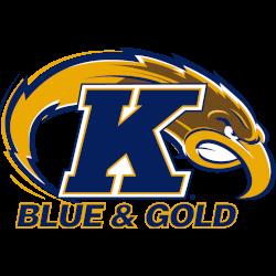 kent-state-golden-flashes-alternate-logo-2001-2017