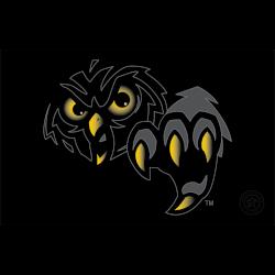 temple-owls-alternate-logo-1996-2014