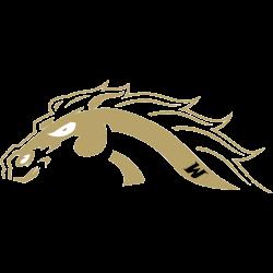 western-michigan-broncos-alternate-logo-2013-2021-2