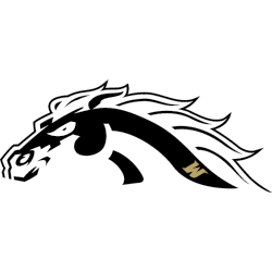 western-michigan-broncos-alternate-logo-2013-2021